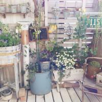 広いお庭がなくてもいい!アイデアが詰まった、ベランダガーデナーのススメの画像