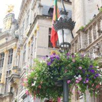 得も言われぬ美しさ ベルギー王国 ー花の絨毯ーの画像