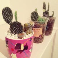 多肉植物の植木鉢に!応用できる身近なアイテム3選の画像