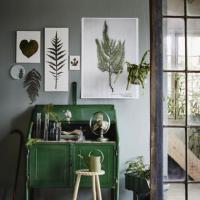 コツは高さのメリハリ♡ センス良くグリーンを飾る4つのポイント の画像