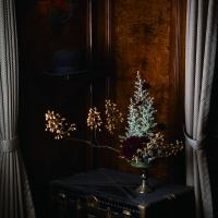 季節のインテリアコーディネートに欠かせない、枝もの・実ものアレンジメント ブラック・ブラウン編の画像
