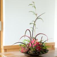 野菜や果物をインテリアグリーンに取り込む!アレンジ集の画像