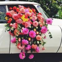 まさにアート!Pinterestで見つけた「こぼれ花」「こぼれ多肉」がインパクトあり!の画像