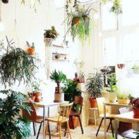 『お部屋のジャングル化計画』してみませんか?グリーンでいっぱいにするステキな実例集まとめの画像