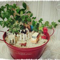インテリアにおすすめな観葉植物のご紹介!の画像