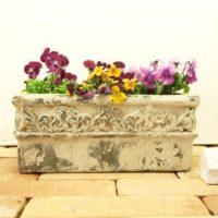観葉植物の植木鉢の選び方についてご紹介します!の画像