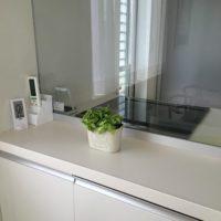 観葉植物の鉢カバーの画像