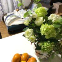 インテリアにぴったりな造花の観葉植物の画像