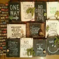 フェイクの観葉植物でお部屋を飾ってみましょう!の画像