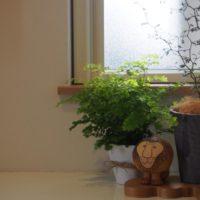 北欧風の観葉植物にぴったり!おすすめの鉢カバーの画像