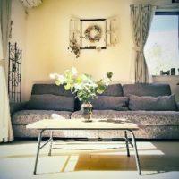 室内に観葉植物を置くときの3つの注意点!の画像