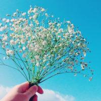花を引き立てる名脇役の「カスミソウ」。その健気な可愛らしさにキュンとくる!の画像