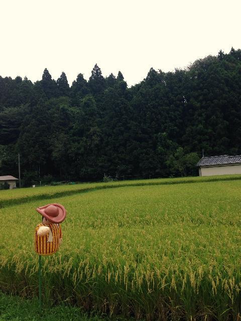 Photo by Sasaki Etzcoさん