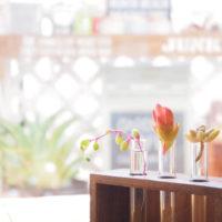 「試験管インテリア」が素敵!小花や多肉植物をナチュラルに飾ろう。の画像