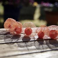 夏の風物詩の「ホオズキ」。口笛で遊んだり、透かしホオズキにして飾ろう!の画像