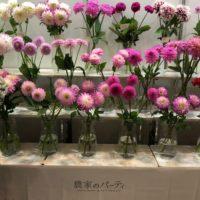 会場中が花と緑で溢れた3日間! 「フラワー&プランツEXPO」に行ってきましたの画像