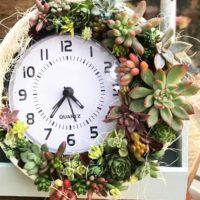 今週の人気『みどりのまとめ』5選!三日月多肉時計/ クリスマスリースの作り方 などの画像