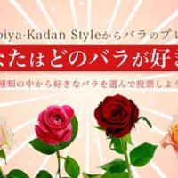 人気のバラが決定!「どのバラが好き?選ぶだけの簡単応募♪キャンペーン」結果発表の画像