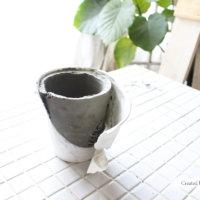 セメント鉢をDIY!100均セメントと葉脈でプランターを手作り!の画像