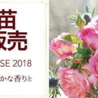 今年のカインズ「バラ苗予約カタログ」はGreenSnapとコラボ! <500名プレゼントあり>の画像