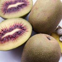 キウイフルーツの栄養|効果・効能や旬の時期、選び方や保存方法は?の画像