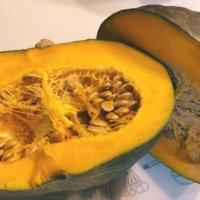 かぼちゃの育て方・栽培|プランターでも収穫できる?受粉や実を甘くするコツは?の画像