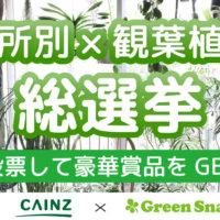 【結果発表】CAINZ☓GreenSnapの総選挙シリーズの第13弾『場所別×観葉植物総選挙』の画像