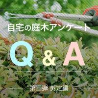 自宅の庭木アンケートQ&A 第三弾【剪定編】の画像