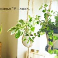モダンで可愛い!「波佐見焼」ならどんな植物もおしゃれに見せてくれる?の画像