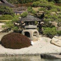 和風の庭をつくろう!和モダンな家におすすめの庭木や植物、アイテムとは?の画像
