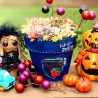ジャック・オ・ランタンを飾ろう!ハロウィンを楽しむアレンジ雑貨🎃の画像