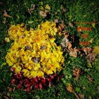 センスが光る!さまざまな「落ち葉」を使ったおしゃれアート作品集の画像