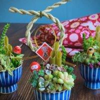 三ヶ日を植物でお祝い!来年のお正月飾りの参考にしたいアイディアが満載の画像