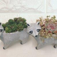 個性的なものから笑えるものまで! かわいいアニマル鉢で植物を飾ろうの画像