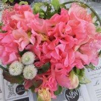 前向きな意味を持つ花言葉|夢、希望、勇気など、頑張る人にプレゼントしたい花9選の画像