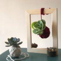 簡単DIY!吊るしてかわいい「多肉植物の麻ひも玉」をつくってみようの画像
