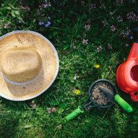 きれいなお庭を目指そう!「第二章 ガーデニングに適した雑草対策は?除草剤の種類も解説」の画像