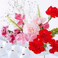 母の日に贈る花8選!なぜカーネーション?花束や鉢植えにおすすめの花は?の画像
