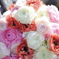 ラナンキュラスの花言葉|色別の意味や種類、贈り物に人気の理由とは?の画像