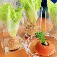 スーパーで買った野菜が再び育つ?コロナに負けず、おうち栽培に挑戦しようの画像