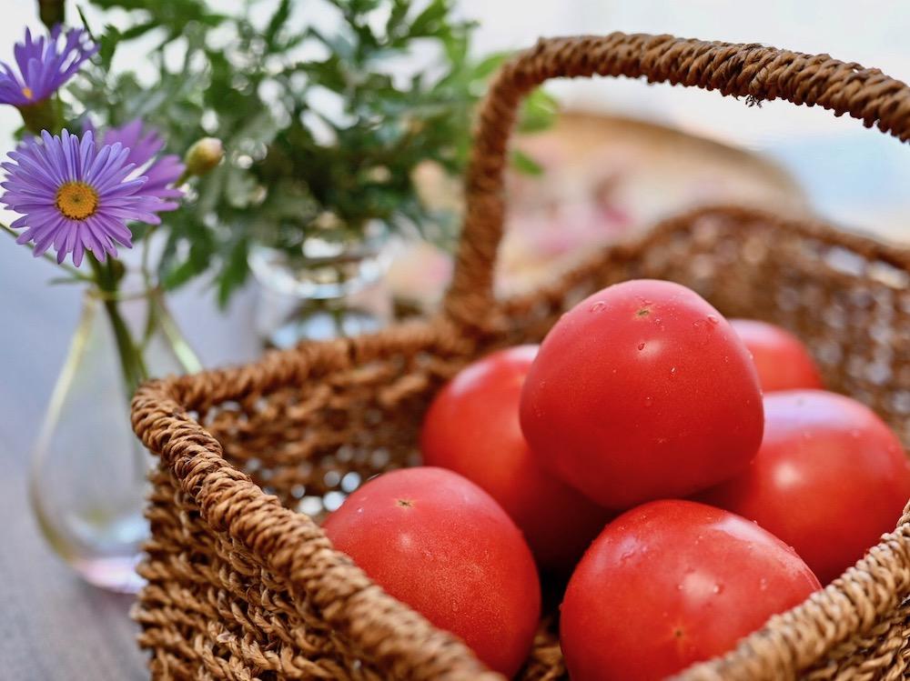 トマトの育て方|プランターで栽培するコツは?水やりの頻度は?の画像