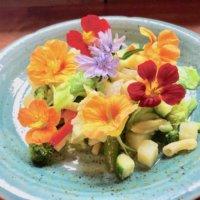 この花も食べられる⁉︎エディブルフラワーで彩りと健康を手に入れよう♫の画像