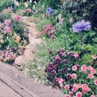 おしゃれな庭づくりに◎スタイル種類別にガーデンデザインをまとめてみた!の画像