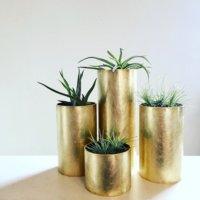 風水的にも◎上品でステキな「真鍮」が鉢やフラワーベースにおすすめ!の画像