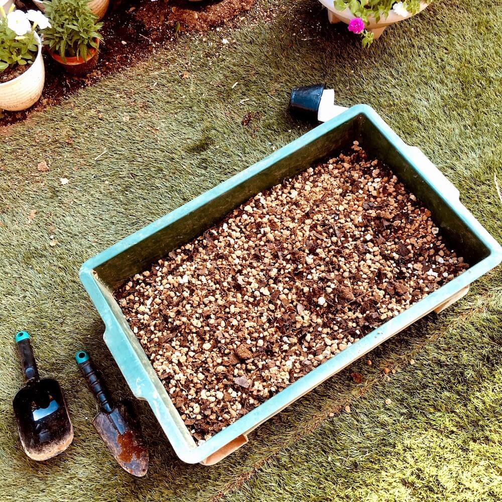 作り方 液体 肥料
