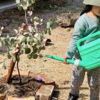 液肥(液体肥料)とは|使い方や作り方は?水耕栽培や葉面散布にも使える?の画像
