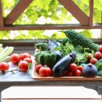 家庭菜園を始めよう!初心者でも失敗しない育てやすいおすすめ野菜15選の画像