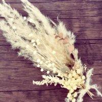 パンパスグラスのドライフラワー|インテリアにあう飾り方や作り方とは?の画像
