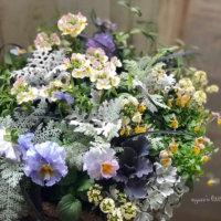 センスのいい寄せ植えをつくる4つのコツ|花と鉢の組み合わせ方とは?の画像