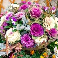 人気の冬の花、ハボタン(葉牡丹)!おすすめ品種と寄せ植えアイデアとは?の画像